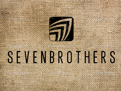 Dribbble-sevenbros-icon