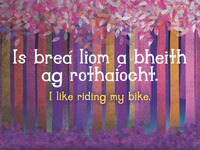 I like riding my bike
