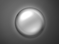 One Layer Circle - Sphere PSD 3
