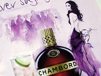 Chambord fashion illustration