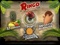 "Flash Website ""Ringo"""