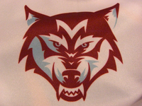 Manly-Warringah Wolves Detail (2011)