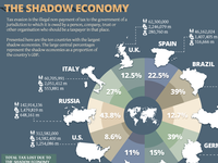 The Shadow Economy