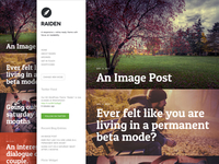 Raiden Wordpress Theme