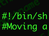 Bash Blog Post