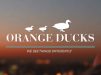 These ducks ain't orange!