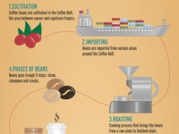 Coffee_infographic2_teaser