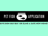 Pet Fish Application