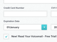 Signup Form Fields