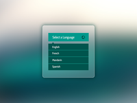 Select a Language Widget