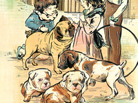 Fat Puppies - Jane Austen Collection