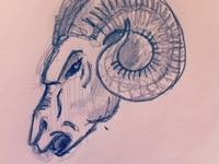 Ram Sketch for Wine Label