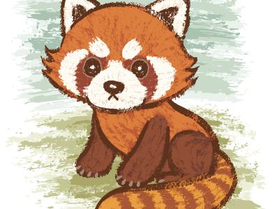 小熊猫图片 red panda高清图片