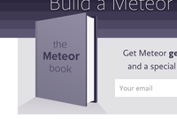 The Meteor Book
