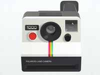 Finished Polaroid Land Camera