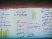 The ACBs - Little Leaves (Lyric Sheet No. 1)
