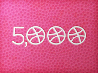 5000 Dribbble Followers!