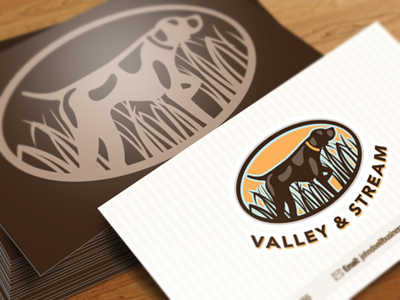 Valleystreamdribbble