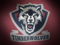 Dribbble__0068_twolves3_teaser