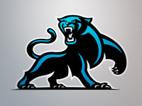 Carolina Panthers Full Body