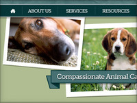 Animal Hospital Website Comp