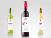 Intense Red - packaging project for wine brand