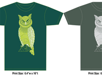 Owl Mock Up