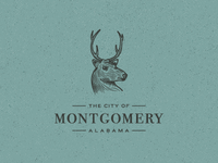 City of Montgomery Branding (School)