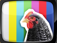 Chicken TV