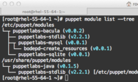 Puppet Module Tool (Implementation)