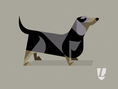 Dog_dd_dribbble