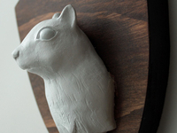 Squirrel Bust
