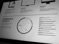 Experience and Skills Wireframes