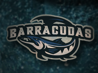 Beware the Barracuda