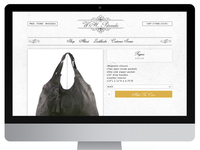 WH Petronela Website Design And Development
