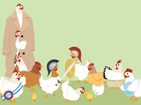 Chickens Illustrations
