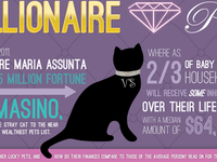 Infographic On Wealthy Pets