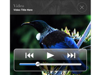 Cook Islands iPhone media video