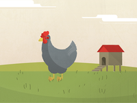 Chicken4_dribbble_teaser