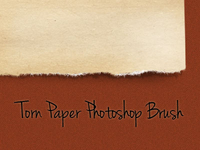 Torn Paper Brush
