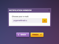 Notification Window