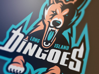 Long Island Dingoes