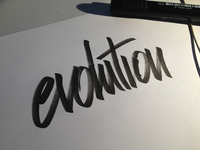 Evolution - Pratice