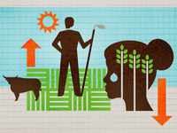 Agriculture illustration