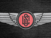 Dribbble_wings_teaser
