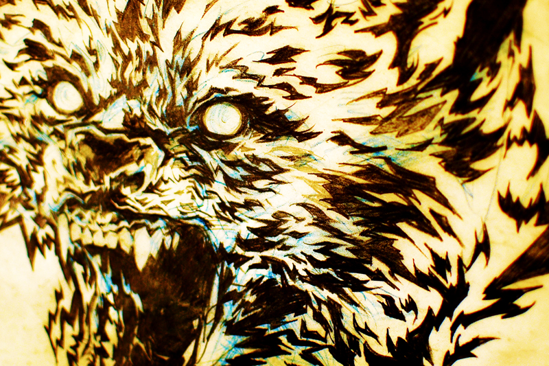 Here-come-the-wolves-detail-01