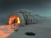 Cozy Igloo