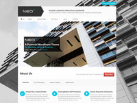 Neo Responsive WordPress Theme - Synced Sliders