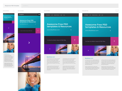 Download Responsive PSD Template