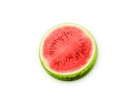 Vector Watermelon web icon/illustration